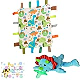 Mary Meyer Dino Wubbanub, Sensory Dinosaur Learning Lovey and Mini Gift Card Baby Gift Bundle-3 Items