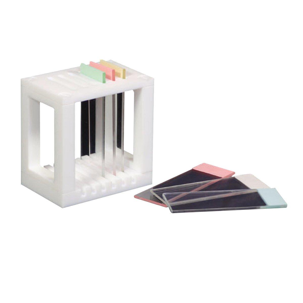 フロンケミカル フッ素樹脂(PTFE) スライドグラス用染色パット掛 6枚掛 NR1362-002 6枚掛  B01N9AY4I1