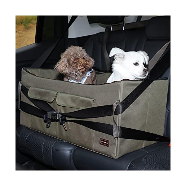 51wJF9uukrS Petsfit Haustier - Autositz mit Sicherheitsgurt - Sicherheit und Komfort für Reisen - Maschinenwaschbare…