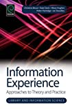 img - for Information Experience: Approaches to Theory and Practice (Library and Information Science) (Studies in Information) book / textbook / text book