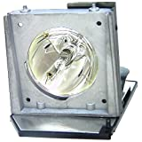 V7 VPL1017-1N Lamp for select Acer, Dell projectors
