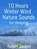 10 Hours Winter Wind Nature Sounds for sleeping