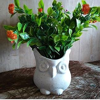 Lasaki Owl Ceramic Pots for Indoor Plants,Planters,Flower pots,gamla for Indoor,Outdoor,Balcony,Home,Garden,Office Decor,Succulent Pot (Color:White)(D:10.5 cm, H:10.5 cm) 51wJP2euw4L