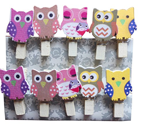 Postcard Pin - 2Pack/20Pcs Paper Photo Peg Pin Postcard Mini Clothespin Cute Owl Scrapbooking Craft Clips Photography Prop with Twine