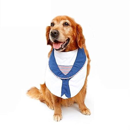 PiPisun Cómodo Collar de recuperación para Mascotas Traje de ...