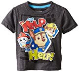 Paw Patrol Little Boys' Toddler Group Shot T-Shirt, Charcoal, 2T