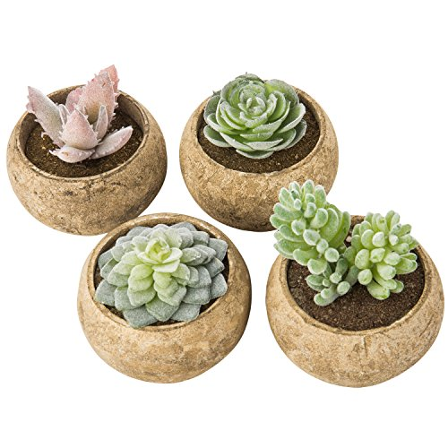 MyGift Assorted Faux Succulent Plants in Beige Pulp Pots, Set of 4 by MyGift