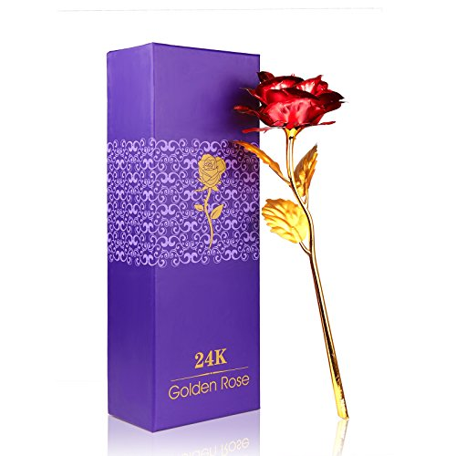 24K Golden Rose, ALLOMN Long Stem Real Rose Dipped in Gold with Gift Box, Best Valentine's Day Gift (Red) (Rose Single)