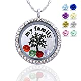 Family Tree Birthstone Necklace - Floating Living Memory Lockets Pendant + My Family Tree Backplate + 12 Pcs Birthstones