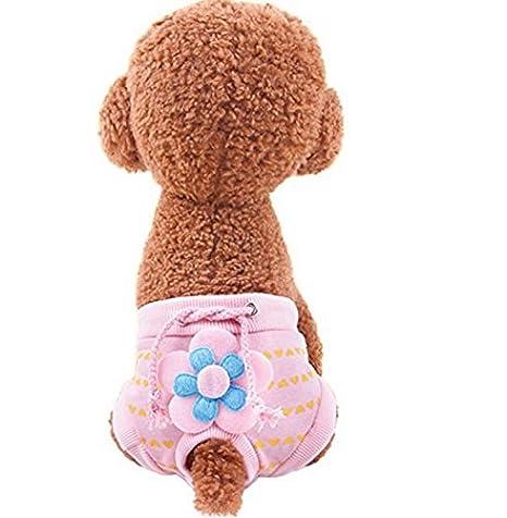 komener Cute perro talla para Menstruación período lencería bragas