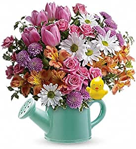 Send a Hug Tweet Tweet Bouquet (Toronto & Vicinity Only)