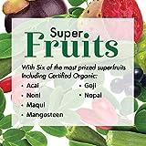 Dynamic Health Certified Organic Moringa Blend