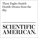 These Eagles Snatch Hostile Drones from the Sky   Mindy Weisburger
