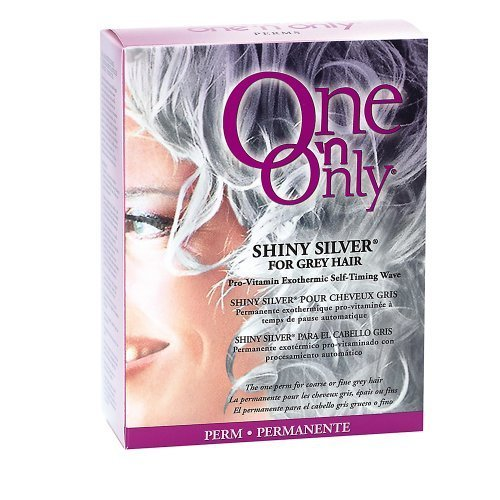 One 'n Only Shiny Silver for Grey Hair Perm with Argan Oil Kit by Jheri Redding (Best Solution For Grey Hair)