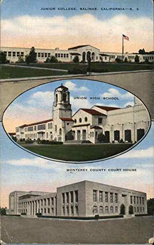 Monterey County Court House, Junior College and Union High School Original Vintage Postcard