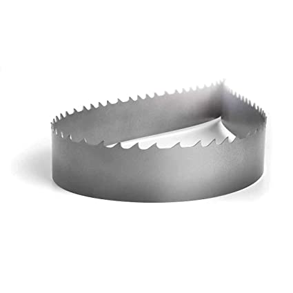 Lenox 3 8 X 025 Master Grit Carbide Tipped Bandsaw Blade With