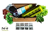 All in One - Organic Vegetable & Herbs Home Garden Container, Compost and Seed Starter Kit