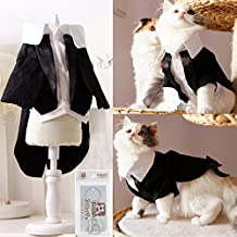 i'Pet Handsome Prince Cat Bridegroom Wedding Tuxedo Faux Twinset Design Small Boy Dog Formal Attire Doggy Party Wear Puppy Birthday Outfit Doggie Photo Apparel with Buttons Holiday Fabric Clothes Halloween Classics Collection Costume (Black Tuxedo, Large)