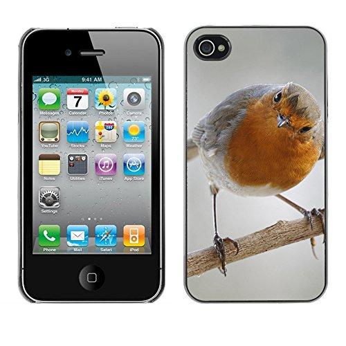 Premio Sottile Slim Cassa Custodia Case Cover Shell // F00019574 songbird Curious // Apple iPhone 4 4S 4G