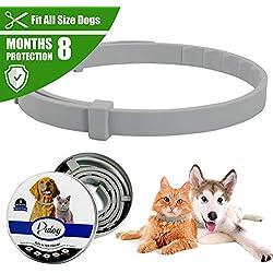 QingZhou Collar antipulgas y garrapatas para Perros y Gatos, Resistente al Agua, Collar de Goma antipulgas Ajustable, Seguro Natural Size 38cm