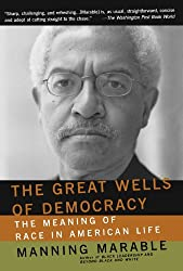 The Great Wells Of Democracy: The Meaning Of Race In American Life