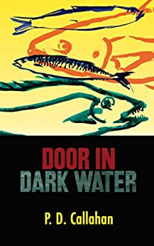 Door in Dark Water by [Callahan, P. D.]