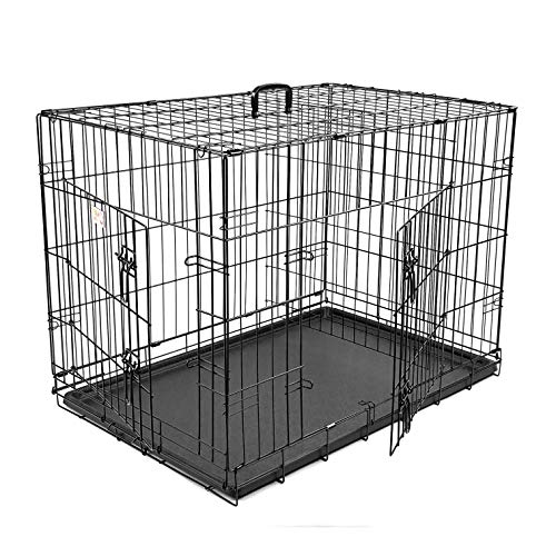 42 inch Double Door Folding Dog Crate By Majestic Pet Products Large