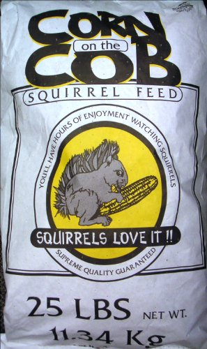 cob corn for squirrels - 1
