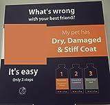 Dead Sea Mineral Pet Dry, Damaged & Stiff Coat Treament Kit