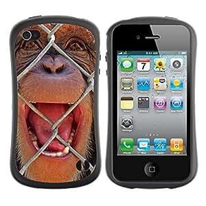 ZooCases Premium Shockproof Hybrid Case Apple iPhone 4 / 4S - The Chimpanzee -