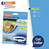 Hartz Ultraguard Flea & Tick Collar for Cats