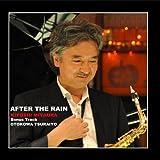After The Rain by Kiyoshi Miyaura