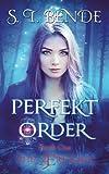 Perfekt Order (The Ære Saga) (Volume 1)