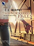 Front cover for the book Thunderbird Falls by C. E. Murphy