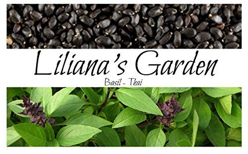 Herb Seeds - Thai Basil - Best Spicy Cooking Variety - Heirloom - Liliana's Garden