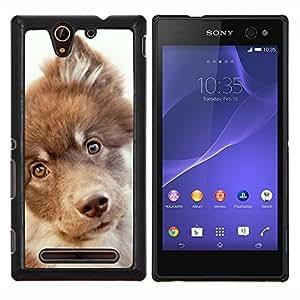 Retriever Mutt Mestizo perro Terrier- Metal de aluminio y de plástico duro Caja del teléfono - Negro - Sony Xperia C3 D2533 / C3 Dual D2502