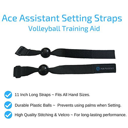 Review Ace Assistant Volleyball Setter
