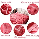 LBRO2M-Fleece-Bed-Blanket-King-Size-Super-Soft-Warm-Fuzzy-Velvet-Plush-Throw-Lightweight-Cozy-Couch-Blankets-90×104-Inch-Pink