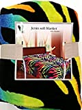 King Rainbow zebra Soft Fleece Blanket Animal Print Throw