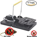 Other Mouse Traps - Best Reviews Guide