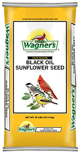 Wagners 76029 Black Oil Sunflower Seed  40 Pound Bag