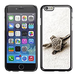 Soft Silicone Rubber Case Hard Cover Protective Accessory Compatible with Apple iPhone? 6 (4.7 Inch) - turtle baby cute sand sea animal marine by runtopwell