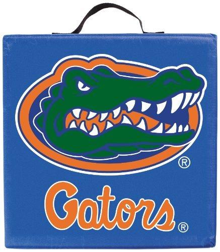 Florida Gators BSI Seat Cushion ()