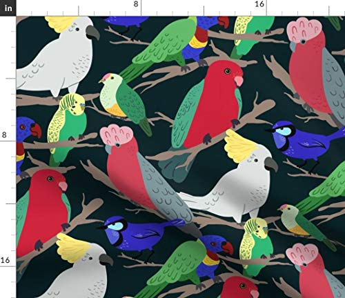 - Spoonflower Australian Birds Fabric - Birbs (Dark) Red Green Parrot Cockatoo Lorikeet Fairy Wren Budgerigar Rose Print on Fabric by The Yard - Minky for Sewing Baby Blankets Quilt Backing Plush Toys