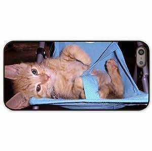iPhone 5 5S Black Hardshell Case kitten stroller playful lie Desin Images Protector Back Cover