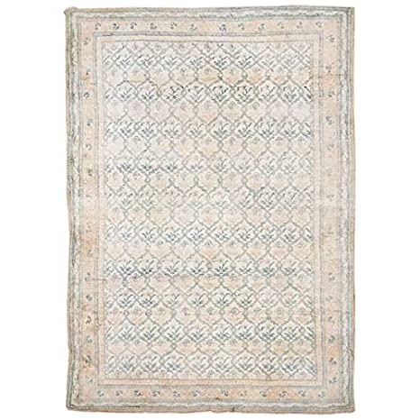 Amazon Com Manhattan Oriental Rugs Antique 4x7 Cotton Agra Area Rug