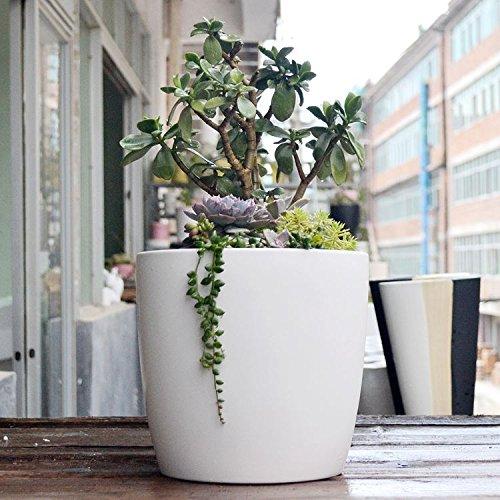 Planter Pot, beautiful color matte white (White Floral Pot)