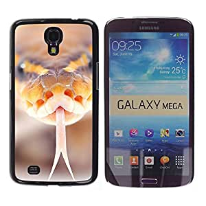 Qstar Arte & diseño plástico duro Fundas Cover Cubre Hard Case Cover para Samsung Galaxy Mega 6.3 / I9200 / SGH-i527 ( Snake Hiss Orange Macro Close-Up Nature)