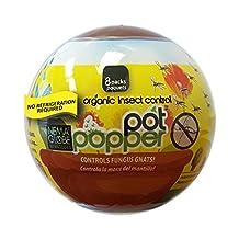 Nema Globe Pot Popper Pro Gnat and Thrip Control