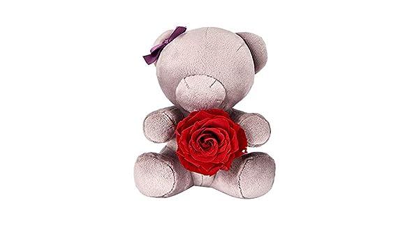Oso de San Valentín abrazo, adorable oso gris de peluche corto que da a la novia un amor de por vida solo una persona para la decoaración del hogar, D.: Amazon.es: Hogar